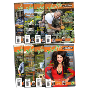 8 issues discounted!!