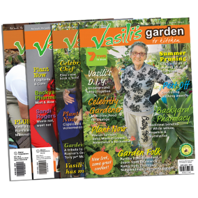 Summer Issue Value Pack