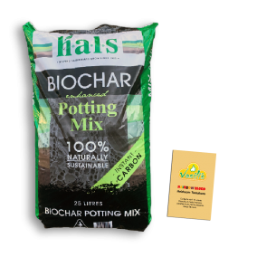 Biochar Enhanced  Potting 25Lt + Rainbow Blend Tomatoes