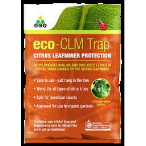 Citrus Leafminer Trap