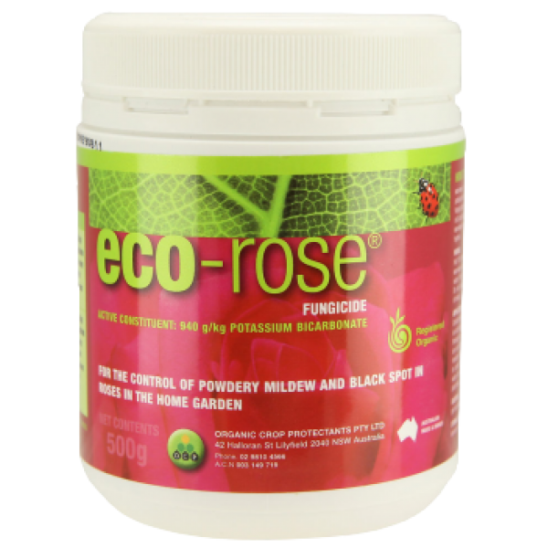 Eco Rose 500g
