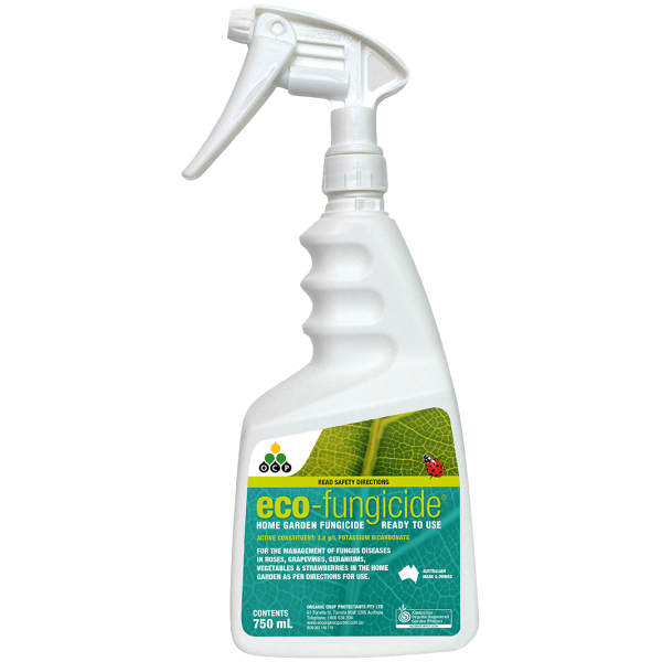 Eco Fungicide 750ml RTU