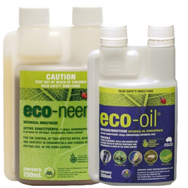 Eco Neem 250ml + Eco Oil 250ml