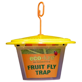 Eco Lure Male Fruit Fly Trap buy 1 get 1 free ends midnight 15th Nov