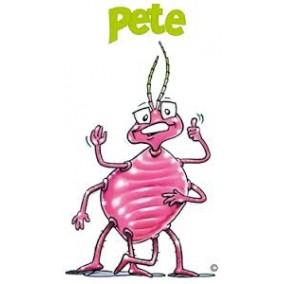 Pete (Predatory Mite)