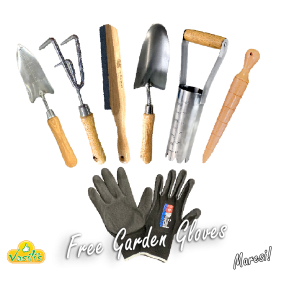Ashwood Hand Tools with Free Garden Gloves