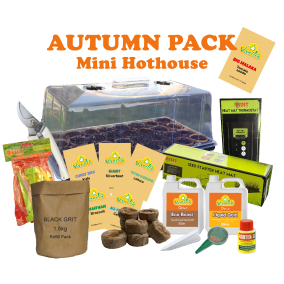 Mini Hothouse Autumn Pack