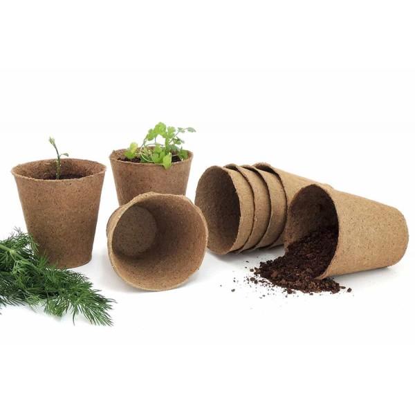 10 Biodegradable Pots 6cm