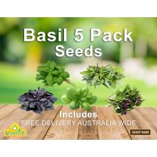 Basil 5 Pack Seeds