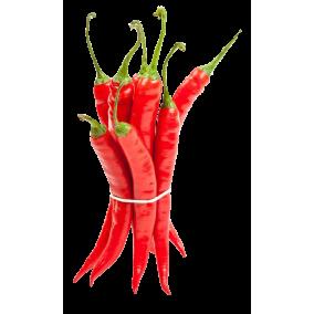 Chilli Long Cayenne Hot