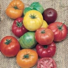 Rainbow Blend Heirloom Tomato