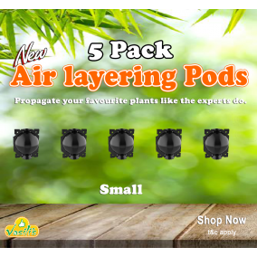 Air Layering Pods x5 Pack Small