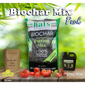 Biochar Potting Mix PACK - 25Lt
