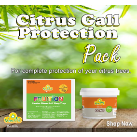 Citrus Gall Protection Pack