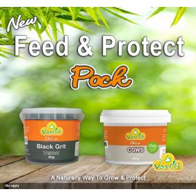 Feed & Protect Pack - BG4kg + CGWS 600g