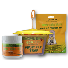 Fruit Fly Trap Pack