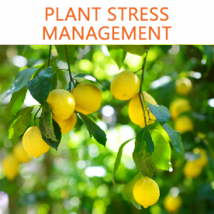 Plant Stress Management