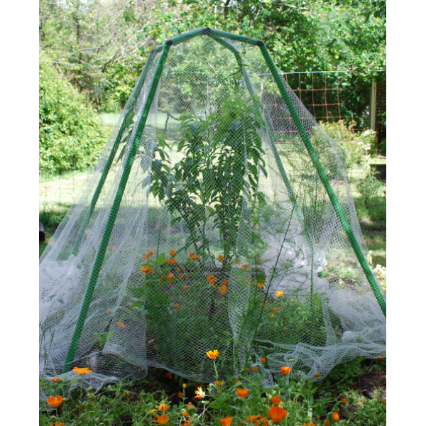 3 in 1 Flexi Garden Frame w' free 4x2.8mtr insect netting
