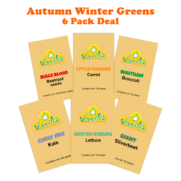Winter Greens 6 Pack
