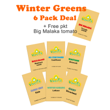 Winter Greens 6 Pack + Bonus pkt Big Malaka Tomato seeds