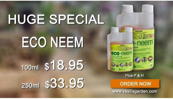 eco neem deal